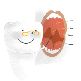 0_ICONA_come è fatta la bocca